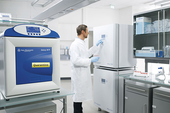 Man in front of incbuator quarantine - Cell Handling Eppendorf