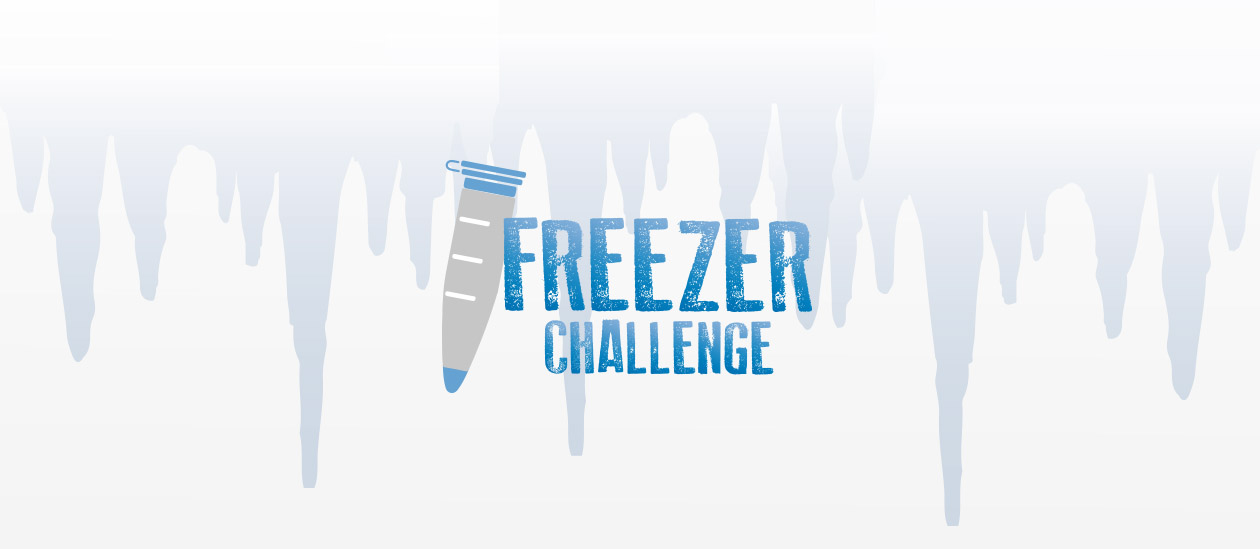 International Freezer Challenge 2019