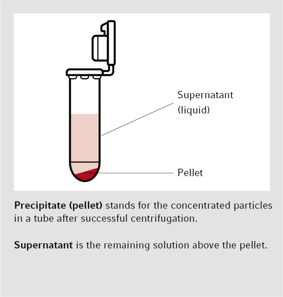 Basics in Centrifugation - Eppendorf Handling Solutions